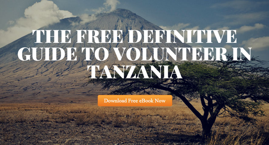The Free Definitive Guide to Volunteer in Tanzania