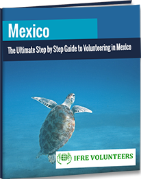 download guidebook to volunteer in mexico