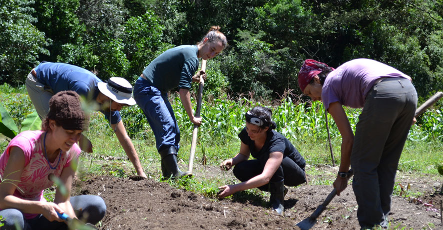 Safety while volunteering in ECUADOR