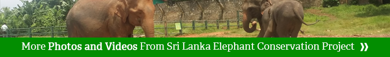 sri lanka project gallery