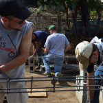 volunteer building projects abroad